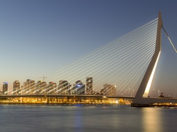 Erasmus Bridge, Rotterdam, Most, Holandia